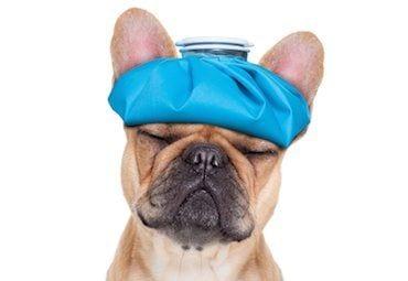 головная боль и анальгетики