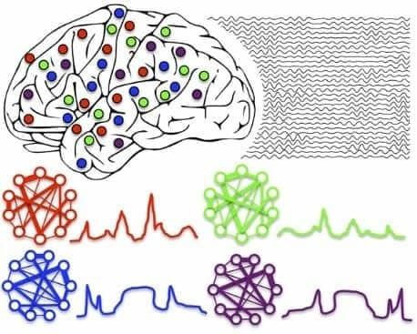 Разные нейроны, сложные связи