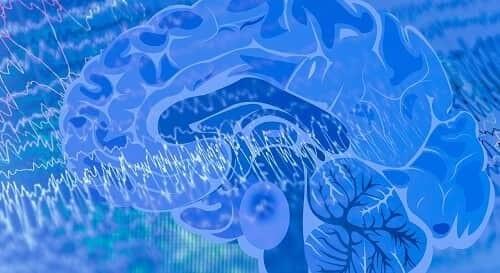 Нейроны мозга работают в унисон