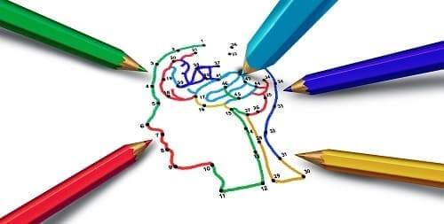 Цветные зоны мозга отвечающие за разные функции