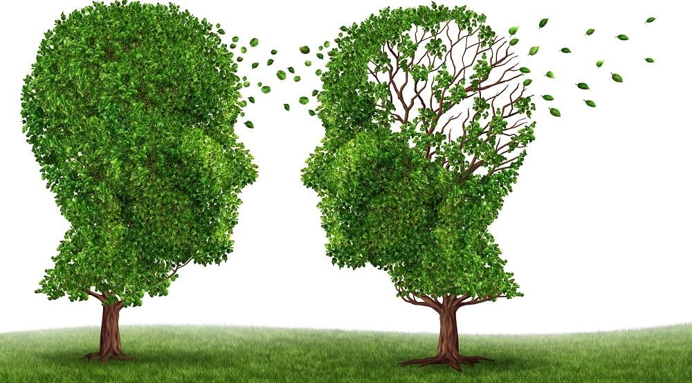 Деменция – гибель личности