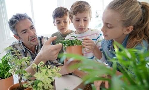 Дети со взрослым учатся ухаживать за растениями