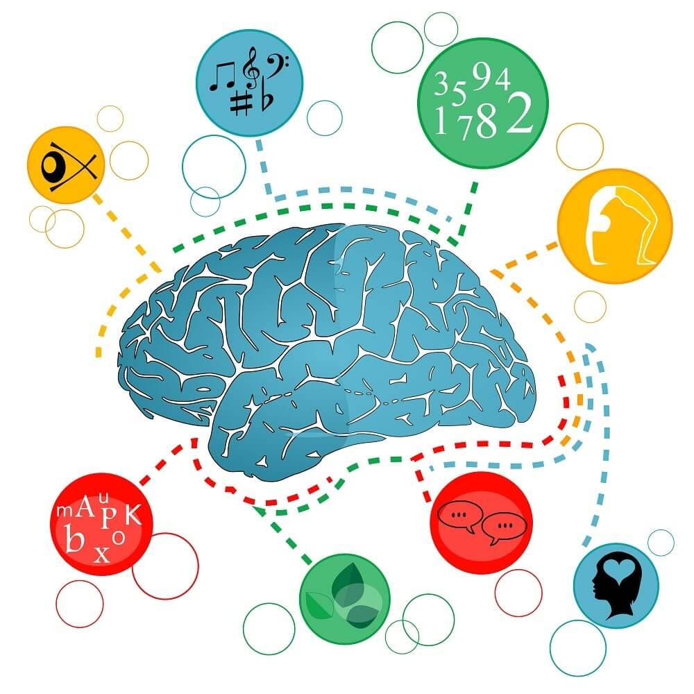 Когнитивные ресурсы мозга