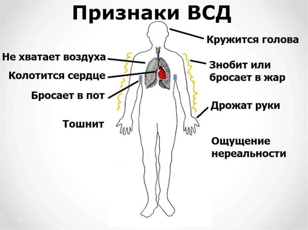 Вегето-сосудистая дистония - Клиника восстановительной неврологии » Новости