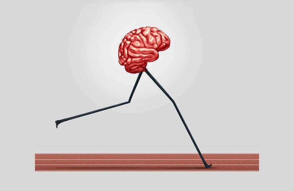 Мозг разгоняется на дорожке