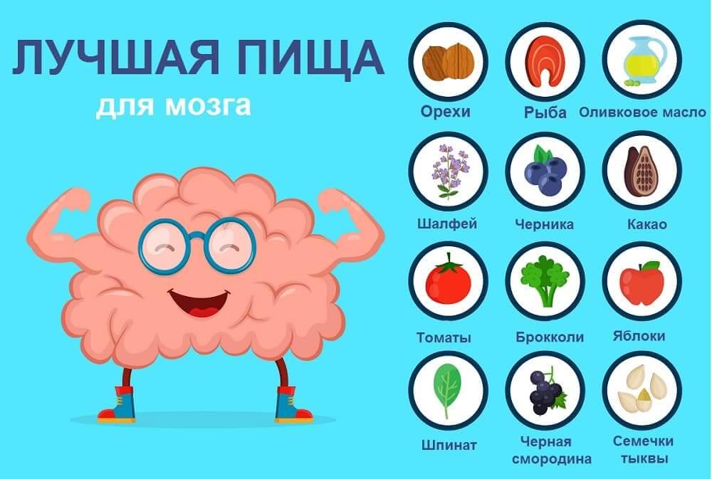 Лучшая пища для мозга