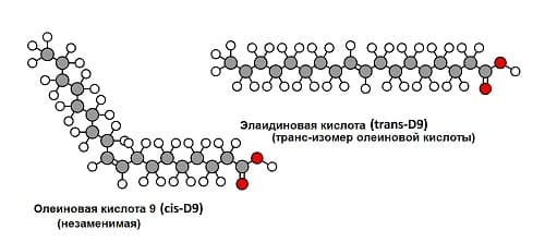 Отличие молекулы жирной кислоты и трансжира