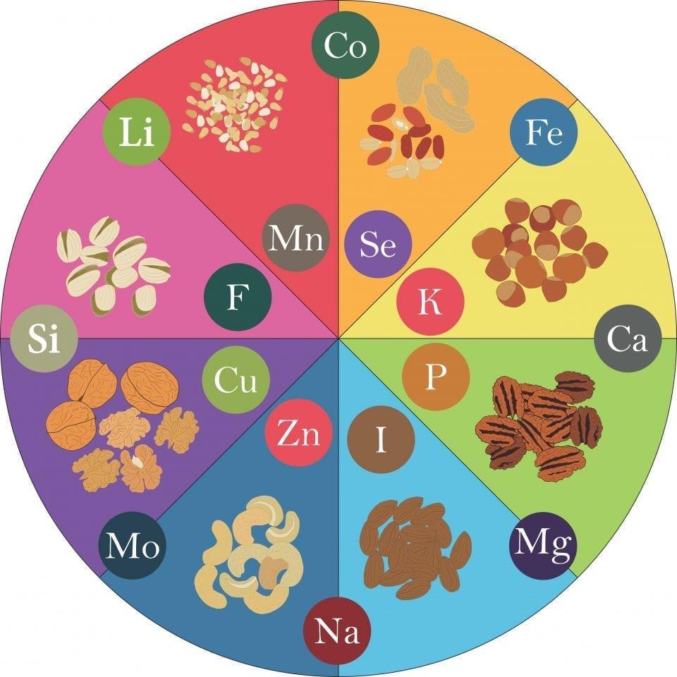 Природные источники минералов для мозга