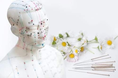 Точки для иглоукалывания и цветы ромашки