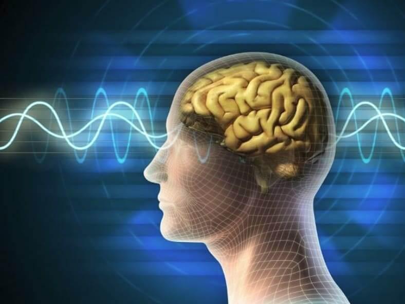 Головной мозг 3д на синем фоне и волновые графики