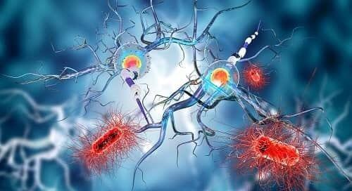 Инфекция мозга вызывает эпилепсию
