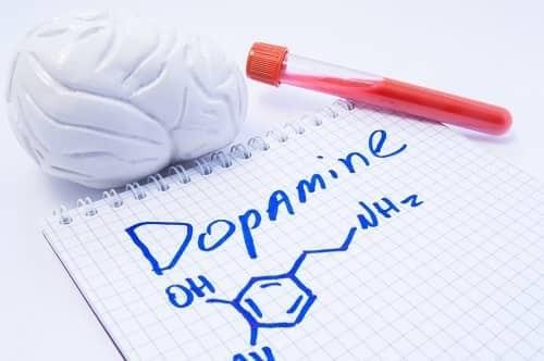 Дофамин – нейромедитор