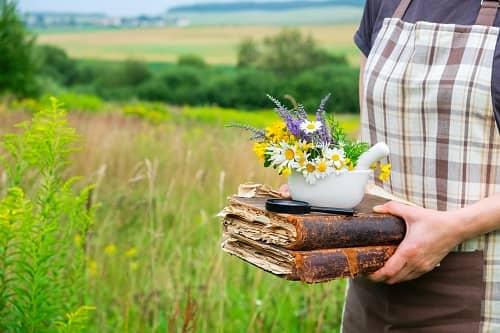 Подбирать травы от эпилепсии с умом