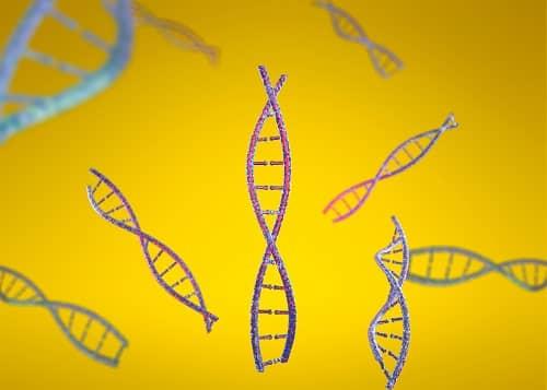 Склонность к эпилепсии хранится в ДНК