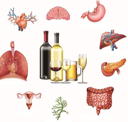 Алкоголь уничтожает все органы тела