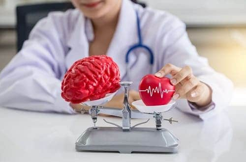 На весах мозг и сердце