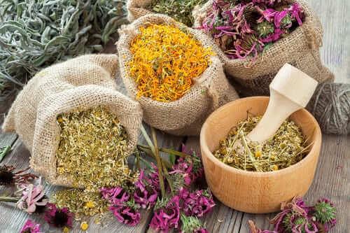 Набор лекарственных трав