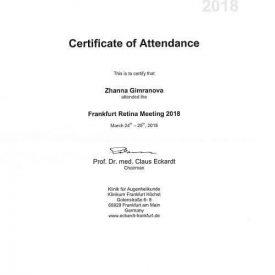 Сертификат об обучении во Франкфурте