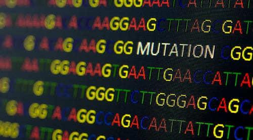 Мутация в отдельном участке гена