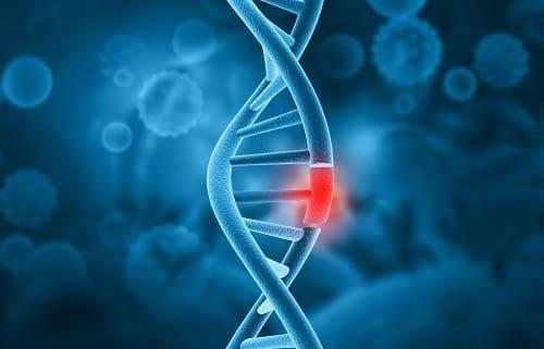 Нарушение целостности участка хромосомы
