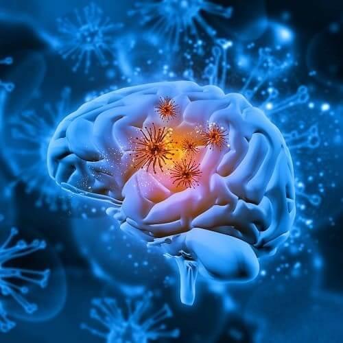 Концепт вирусных частиц в мозговой ткани