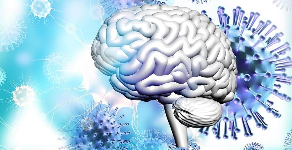 Мозг, окруженный вирусными частицами
