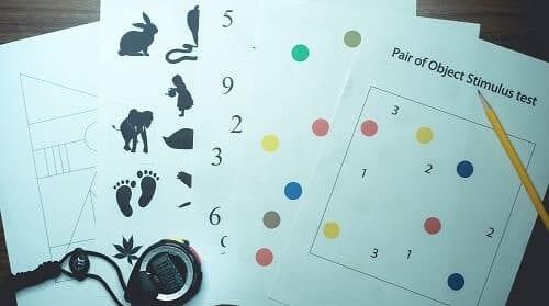 Набор тестов для оценки когнитивных функций