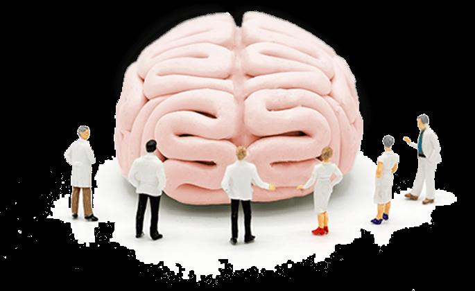 Концепт, врачи изучают мозг