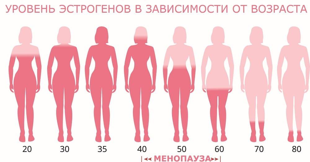 Уровень половых гормонов в периодах жизни женщины
